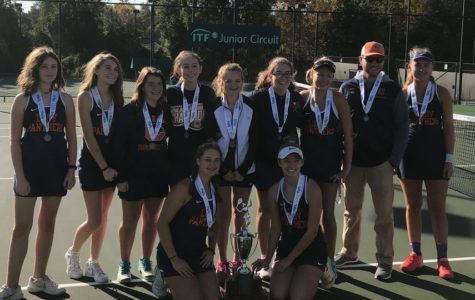 Girls' tennis caps off year as state runner-up